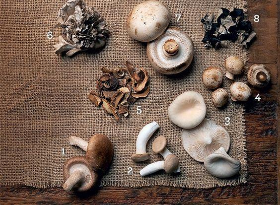 receita salada cogumelos q